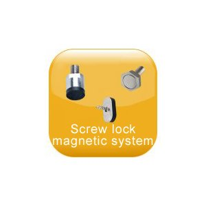Screw lock magnetic system